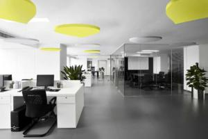 Office Acoustic Celing Panels Suspended In Open Office